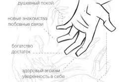 Значение пальцев по фен шуй