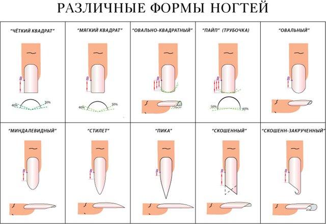 Наращивания ногтей теория